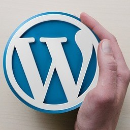 difference-between-hosted-wordpress-and-self-hosted-wordpress