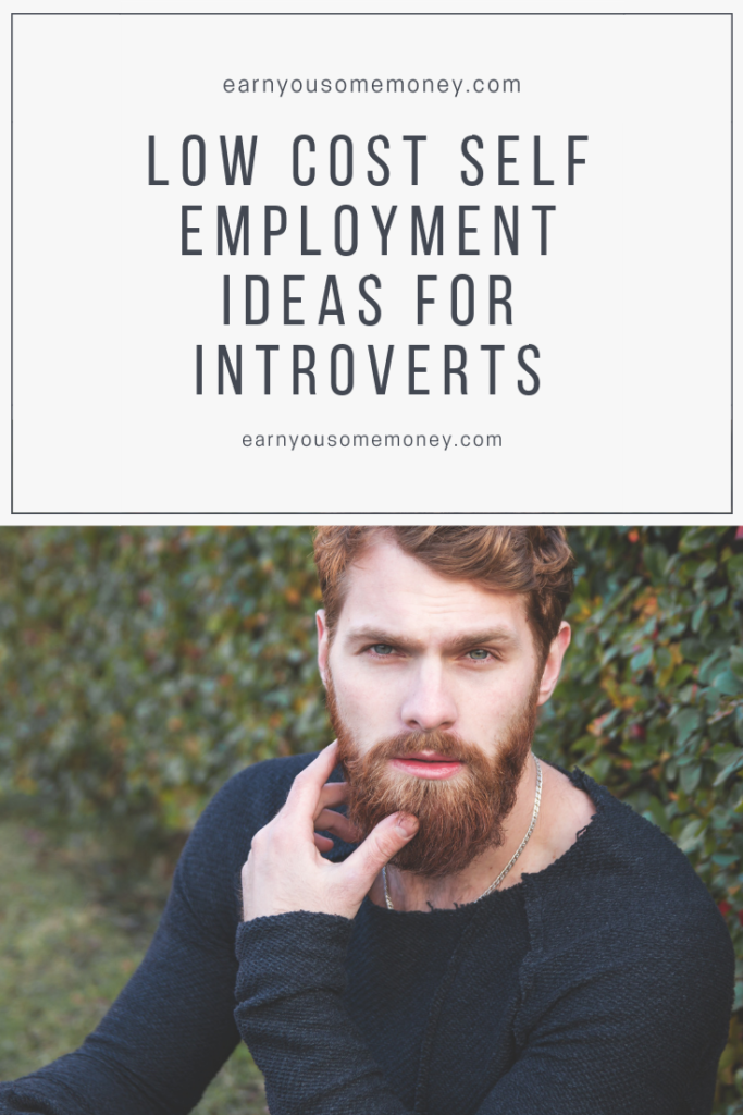 Low Cost Self Employment Ideas For Introverts